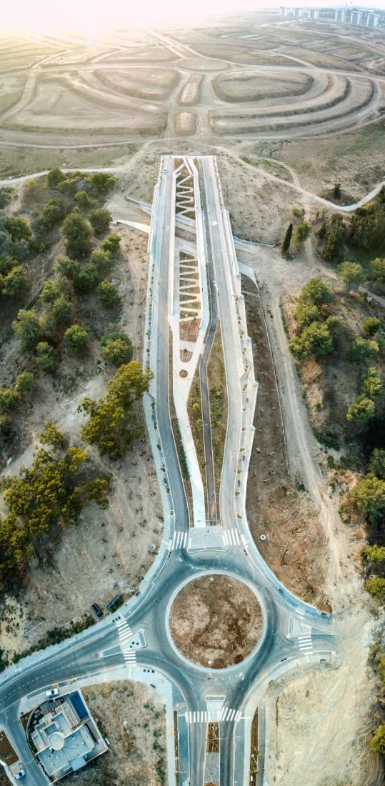 גשר ויצמן